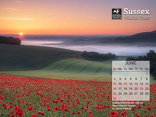 June 2019: South Downs Sunrise by Jamie Fielding