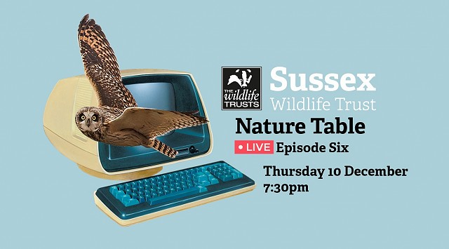 Nature Table Live episode 6 (10/12/20)