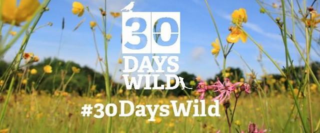 30 days wild 3