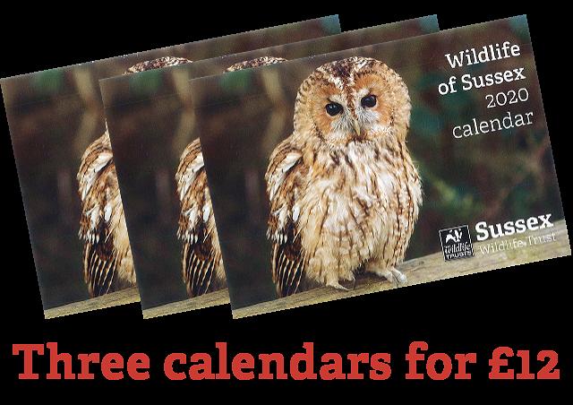 Three Sussex Wildlife Trust 2020 Calendar