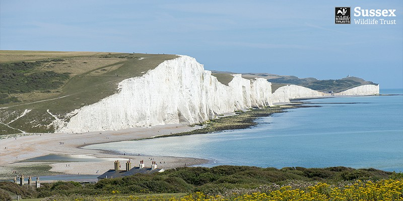 View from Seaford Head nature reserve © Nigel Symington