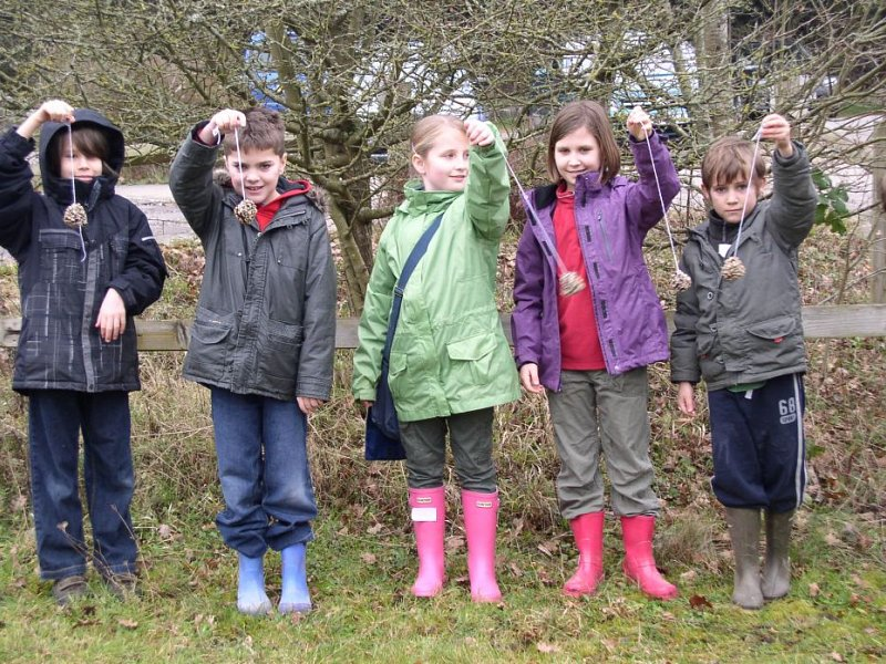 Wild about Winter at Seven Sisters Country Park