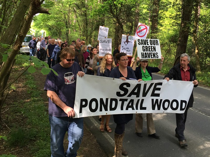 Pondtail Wood - centuries of woodland history destroyed in a few weeks