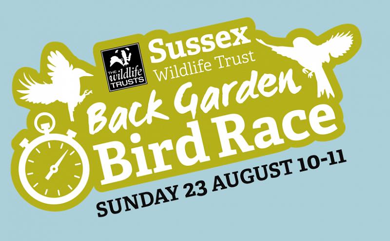 Back Garden Bird Race Sunday 23 August 10-11