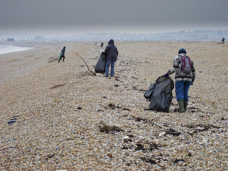 Beach Cleans at Rye Harbour Nature Reserve