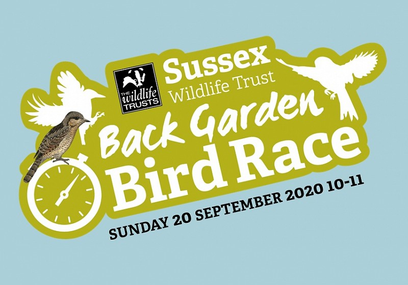 Back Garden Bird Race tomorrow (20 September 10-11)