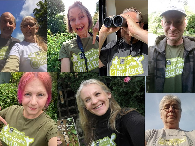 Corona Wildlife Diary: Day Sixty-eight