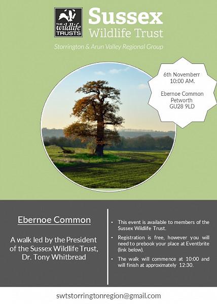 Ebernoe Common Walk - 6th November 2021