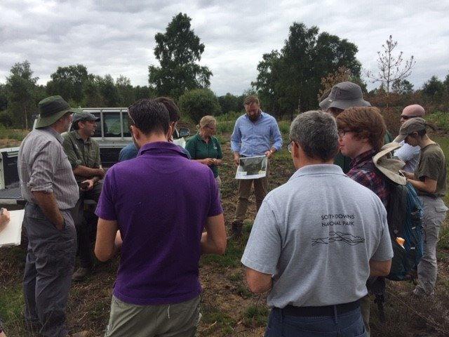 Fire management for heathland professionals
