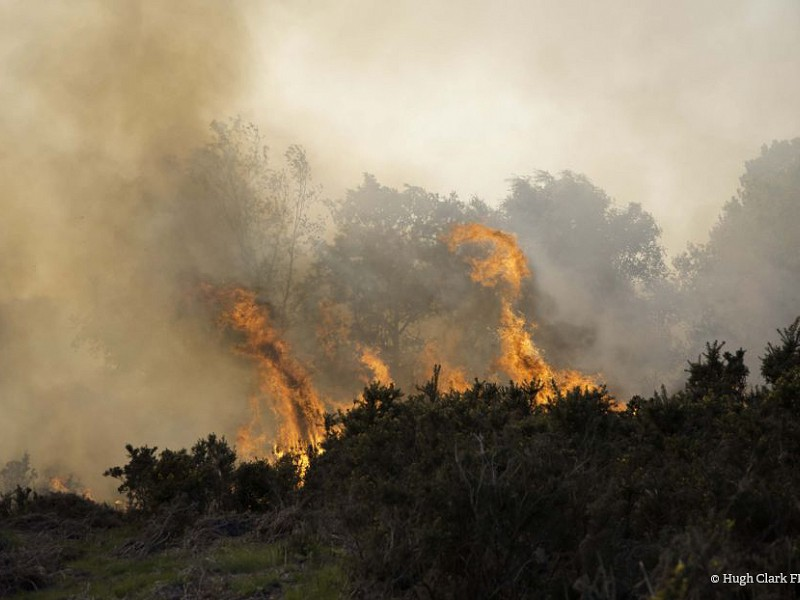 High risk of wildfires