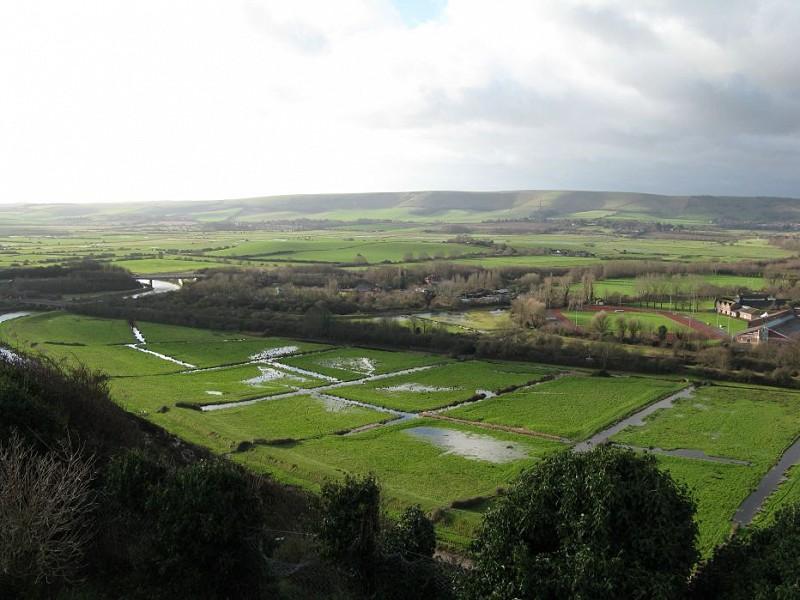 The Natural Capital of Floodplains