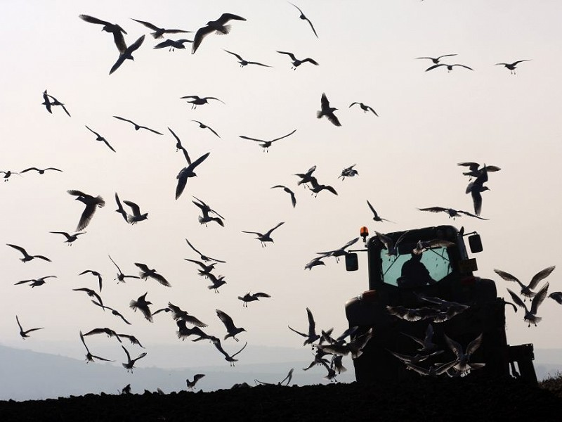 Regenerative agriculture and landscape innovation