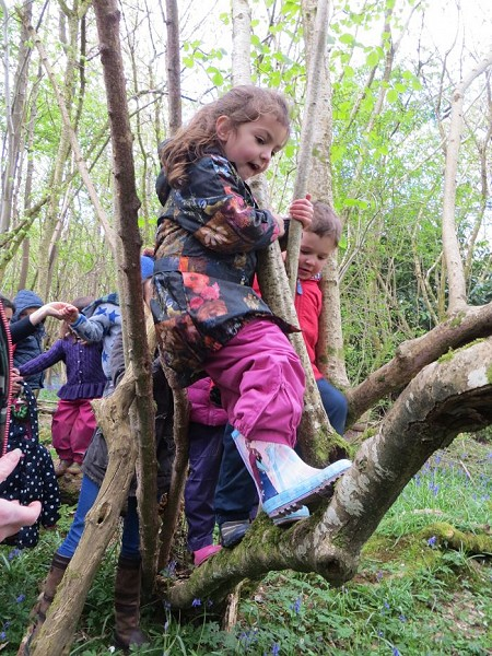 Woodland Adventures for under fives in Mid Sussex