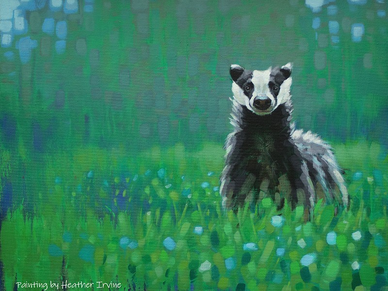 Leading artists come together to raise funds for Sussex Wildlife