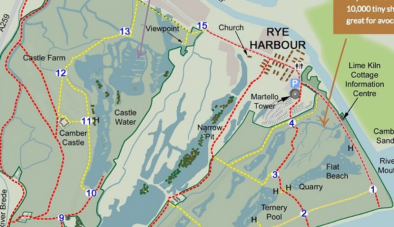 Discover Rye Harbour Interpretation Plan goes out for tender