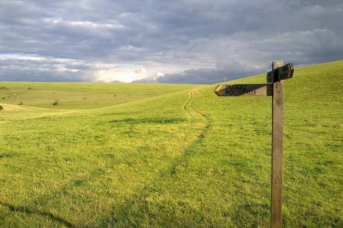 Public consultation on the future of the Eastbourne Downs
