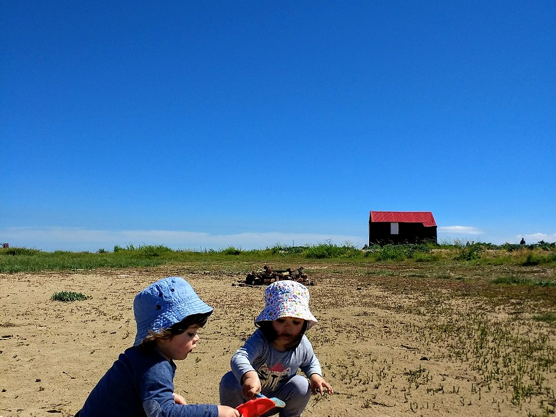 How to make the best of family trips to Rye Harbour Nature Reserve