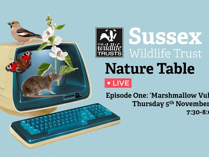 'Nature Table Live ' Episode One