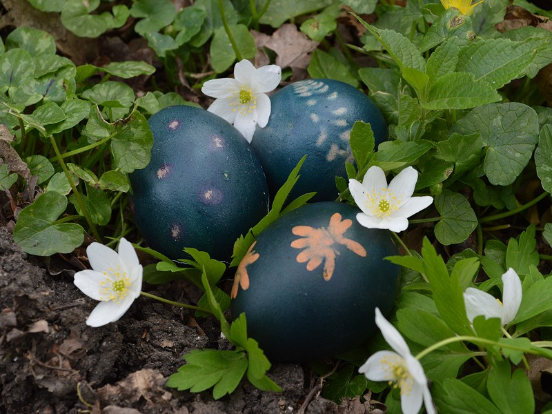 Eggcellent fun for Easter Weekend