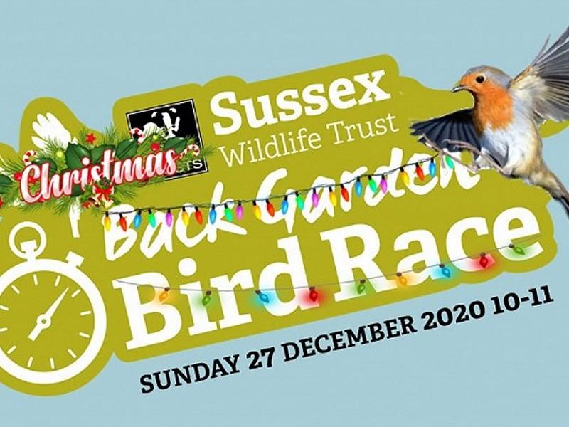 Join us for one last Back Garden Bird Race (27 December 10-11).