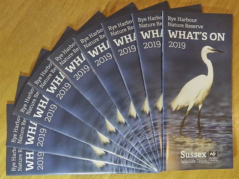 Events and courses at Rye Harbour Nature Reserve in 2019
