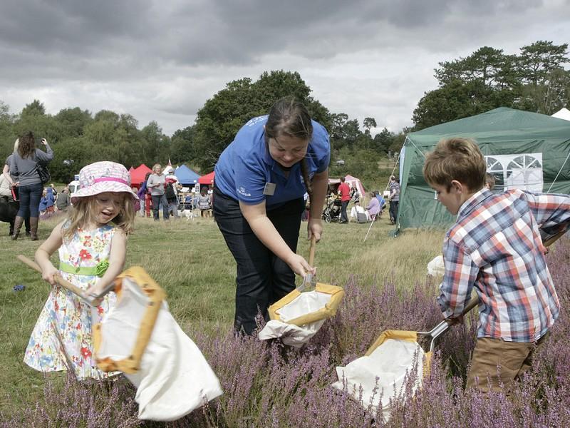 Free family fun and wildlife return to the Heath