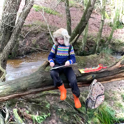 Finding nature's treasures, the adventures of a young naturalist