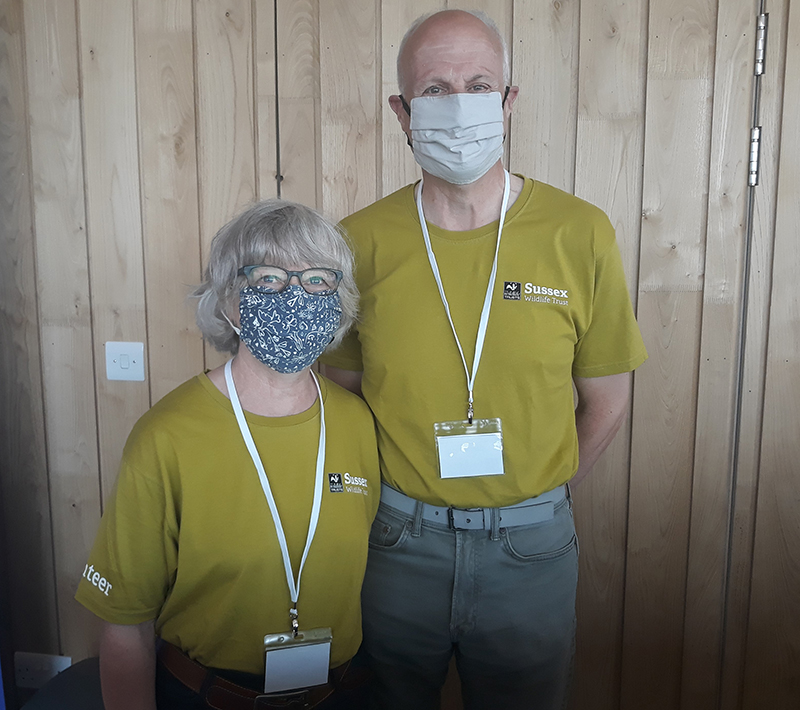 Stephen and sally masters vols ec