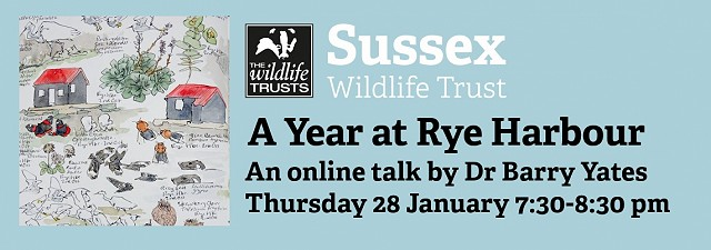 A Year at Rye Harbour: An Illustrated Talk by Dr Barry Yates