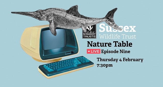 Nature Table Live episode 9 (4/02/21)