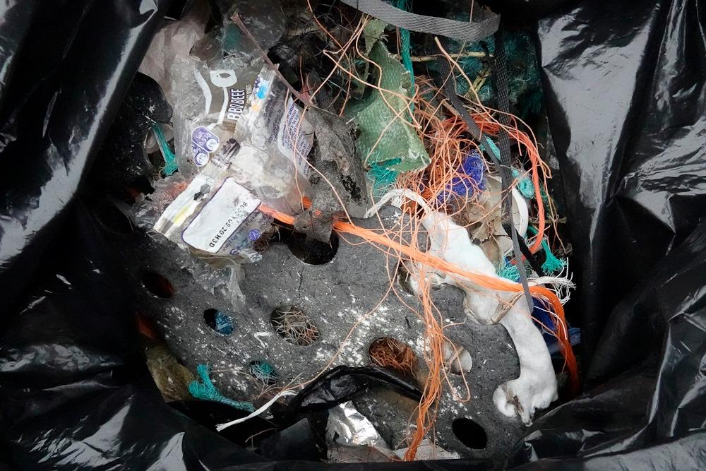 Beach litter jan 2020