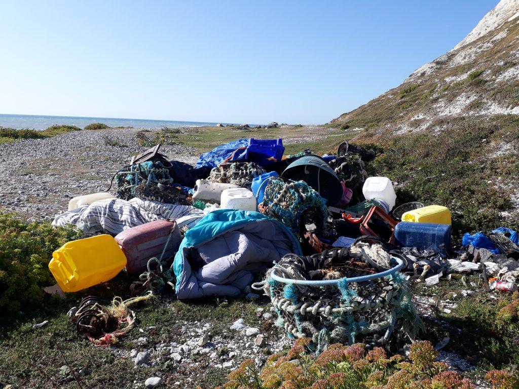 Beach Litter   Nikki Hills