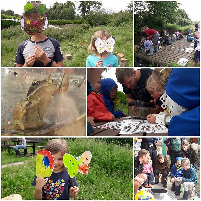 Crawley - Tilgate Park Wildlife Watch (12/06 & 10/07/2021)