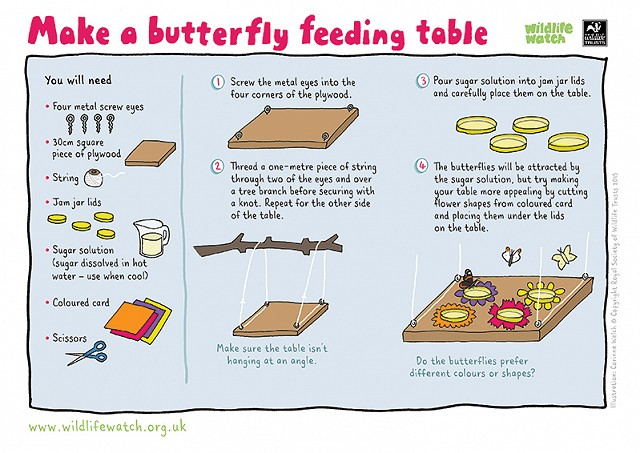 BUTTERFLY TABLE 800