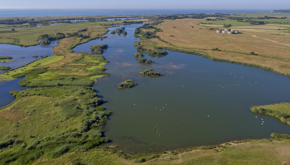 Castle water freshwater wetland