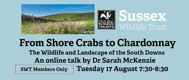 From Shore Crabs to Chardonnay - Members Only