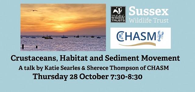 CHASM: Crustaceans, Habitat and Sediment Movement