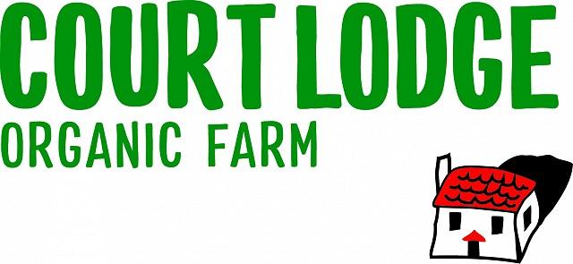 CourtLodge Logo (002)