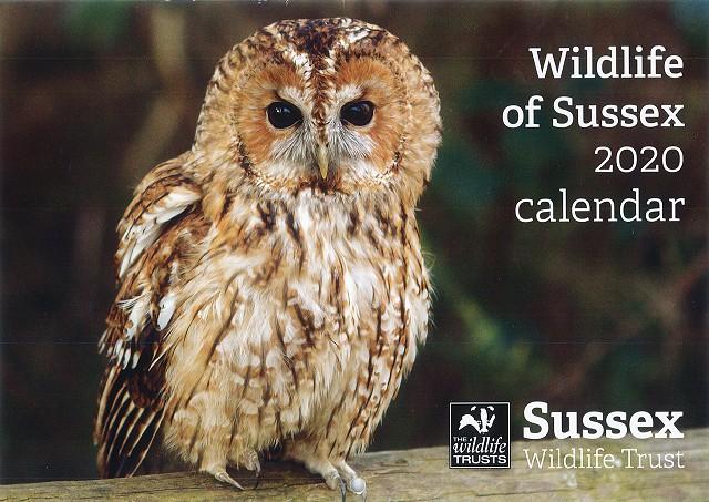 Sussex Wildlife Trust 2020 Calendar