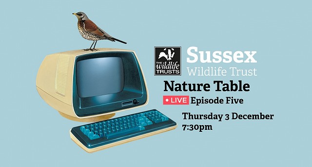 Nature Table Live episode 5 (3/12/20)