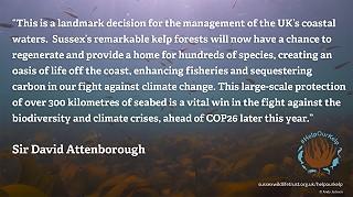 Sir David Attenborough quote