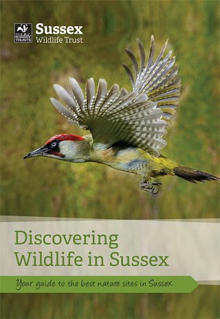 Discovering Wildlife cover