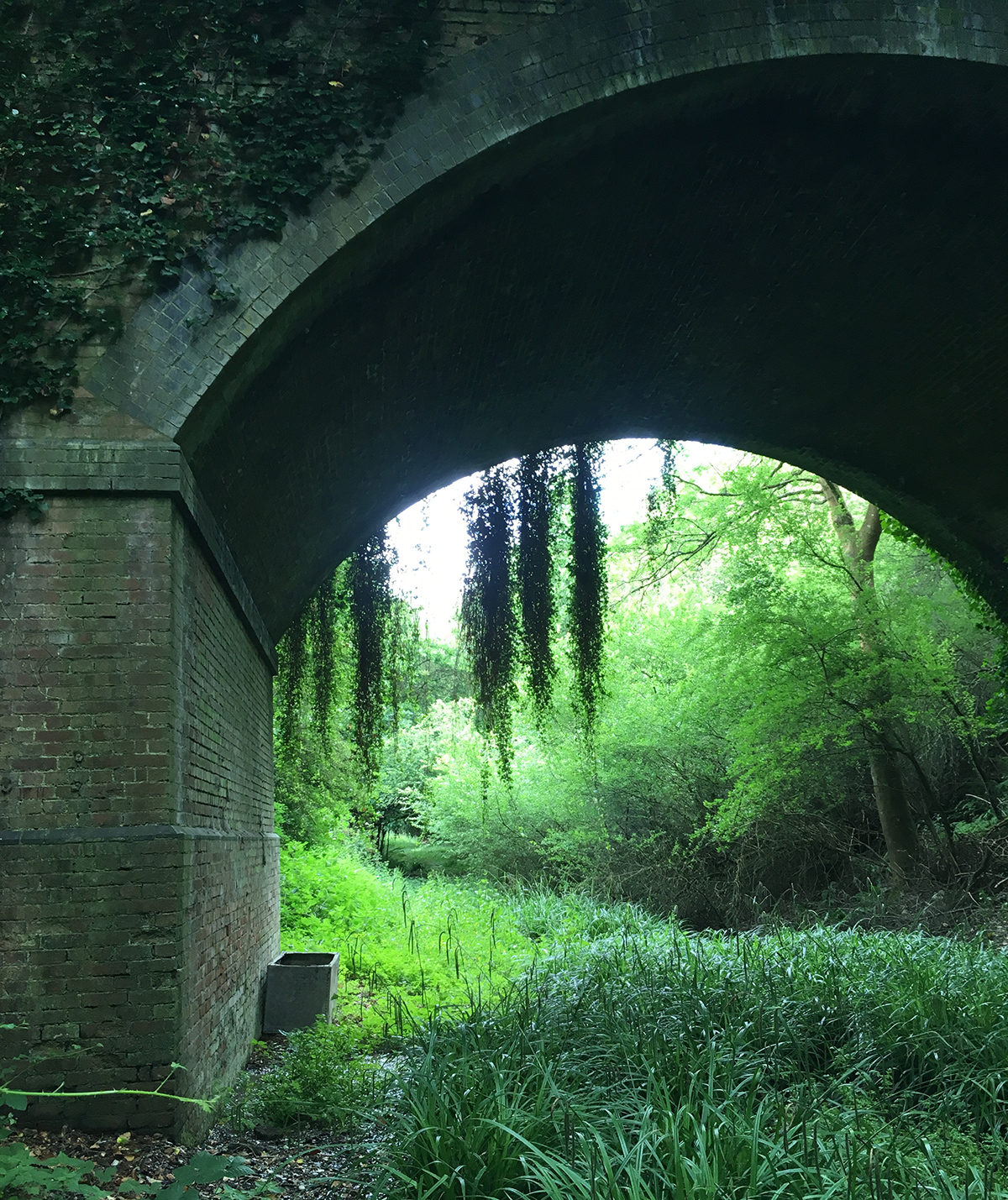 Disused Railway line   Powdermill catchment