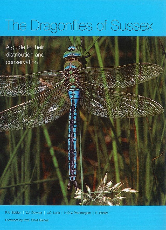 Dragonflies of Sussex