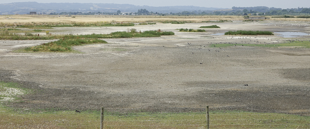 Drought 02607