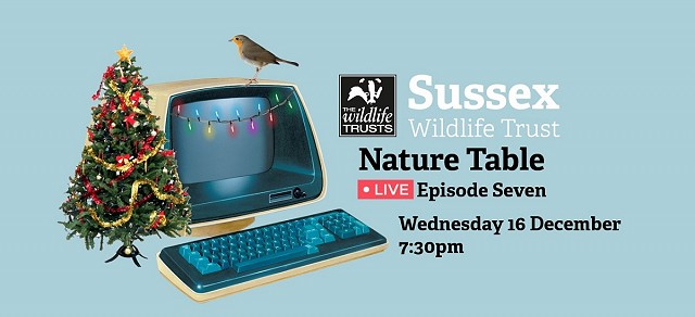 Nature Table Live episode 7 (16/12/20)
