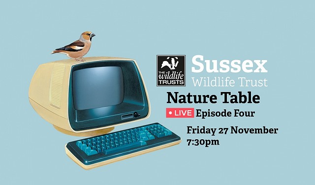 Nature Table Live Episode 4 (27/11/20)