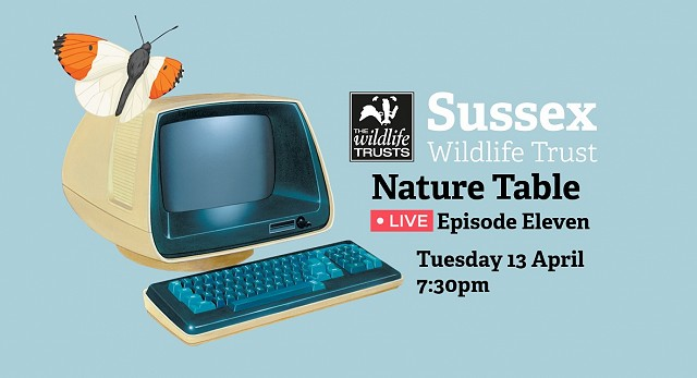 Nature Table Live webinar (13/04/21)