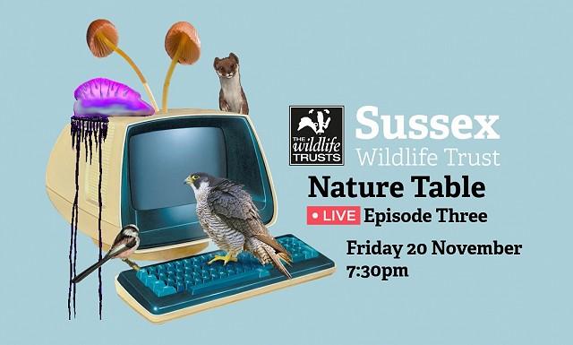 Nature Table Live webinar (20/11/20)