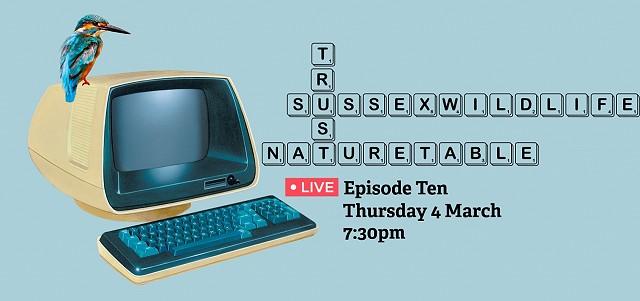 Nature Table Live webinar (04/03/21)